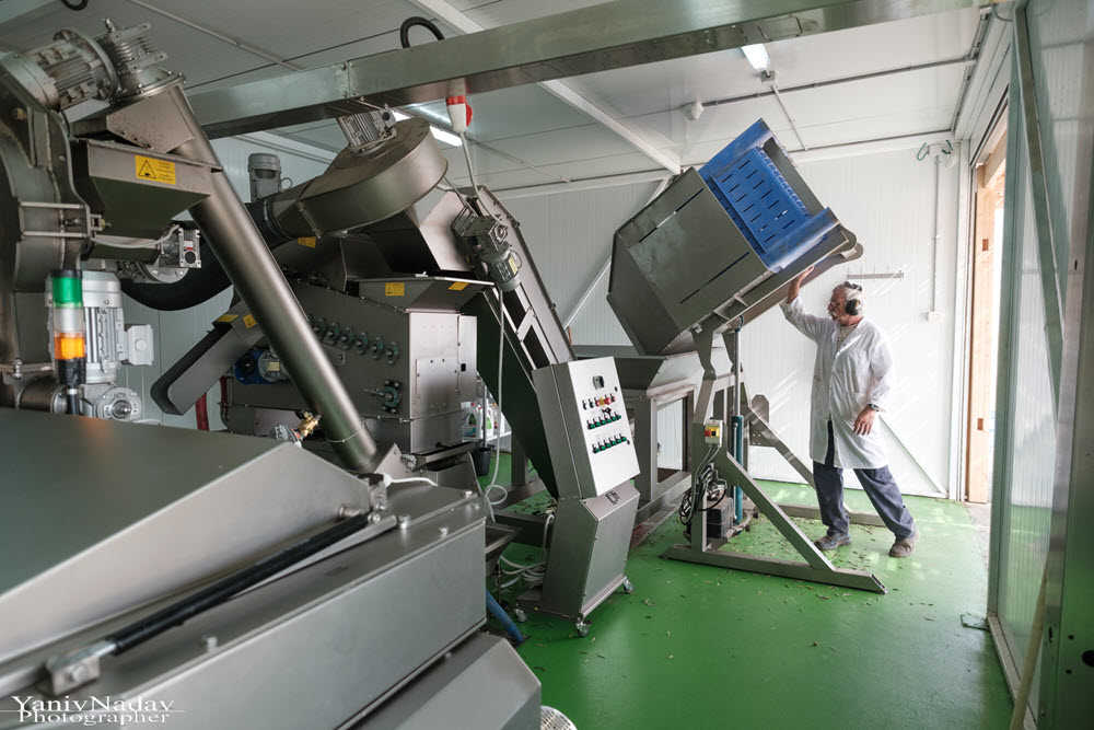 מכונת כבישה לייצור שמן זית